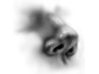 Шишечки на венах ног