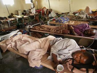 жертвы холеры