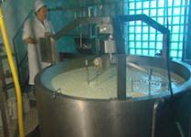 Производство кефир в домашних условиях