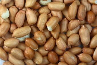 Может ли быть аллергия на антигистаминные препараты