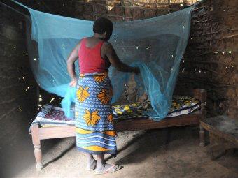 вакцина против Малярии