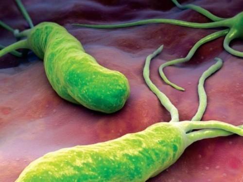 Помог уничтожить микробы в желудке