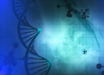 американские генетики требуют запретить редактирование днк человеческих эмбрионов