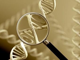 ученые обнаружили опасные мутации геноме большинства
