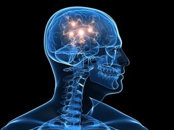 зафиксирован момент формирования идеи мозге