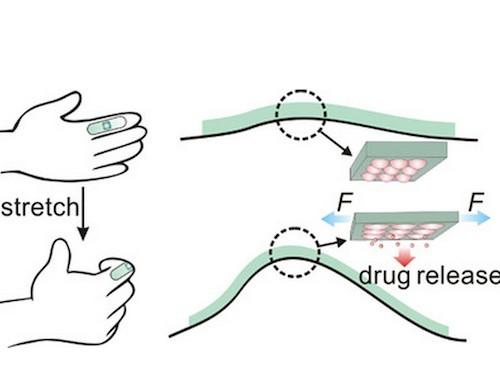 Новая технология доставки лекарств: пластырь, активирующийся при растяжении