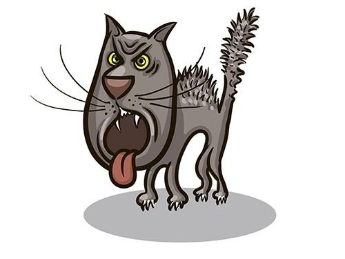 В Пресненском районе Москвы объявлен карантин из-за бешеного кота