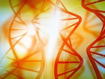 горизонтальный перенос генов бактерий связан миграциями