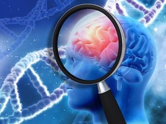 обнаружена причина разрушения синапсов головном мозге болезни альцгеймера