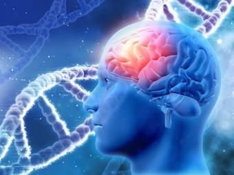 мутации гена brca1 связаны раком молочной железы болезнью