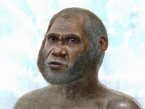 Художественная реконструкция древнего человека из Пещеры Красного Оленя