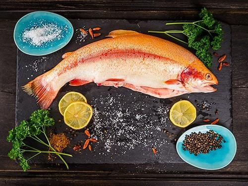 Употребление рыбы и морепродуктов снижает риск развития болезни Альцгеймера