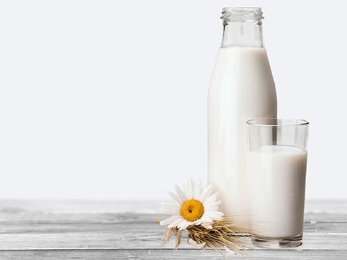 Обнаружены различия в составе органического и неорганического молока