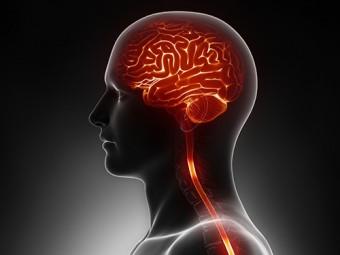 электростимуляция головного мозга поможет быстрее восстановиться инсульта