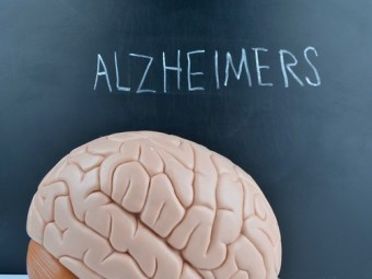 обнаружен белок играющий важную роль развитии болезни альцгеймера
