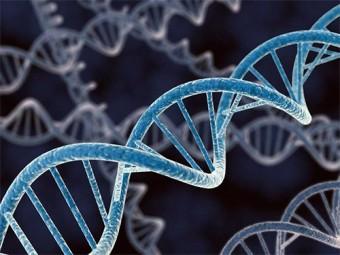 гены продолжают работать тело мертво