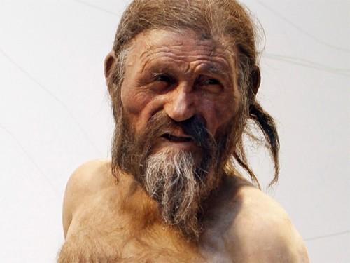 Вглобальной паутине появилось видео с звуком мумифицированного «ледяного человека» Этци