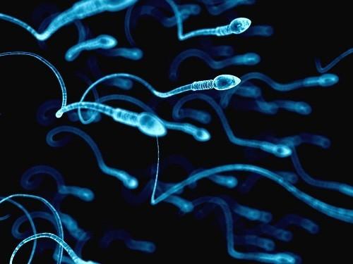 Контрацептивы для мужчин могут появиться ваптеках в2021 году