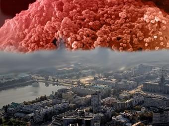 екатеринбурге превышен эпидемический порог заболеваемости вич