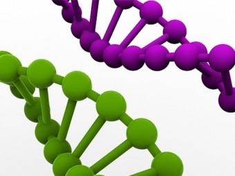 причиной развития многих болезней стать мутации гене