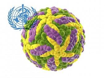 Забытые тропические болезни отступают