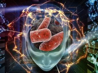 искусственный интеллект распознает туберкулез снимкам