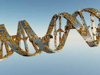 создан каталог генетических мутаций связанных аутоиммунными болезнями
