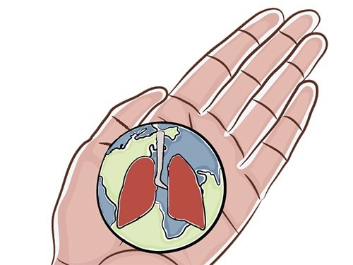 Запоследние 25 лет смертность в итоге заболевания туберкулезом сократилась практически вдвое