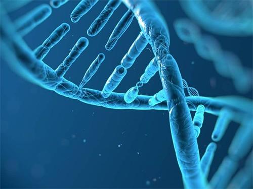 Выявлен ген, ответственный за развитие диабета 2 типа
