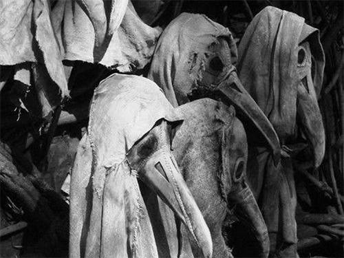 Германские ученые «возродили» бактерию чумы, убившей вVI веке 25 млн человек