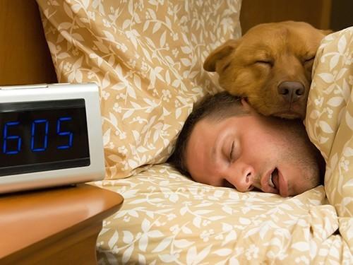Здоровый сон - это то, на чем мы спим