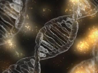 Как отказ от завтрака влияет на ваши гены