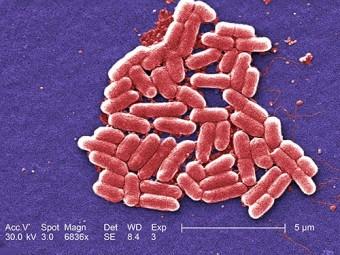 У популярных лекарств против изжоги обнаружили новые опасные побочные эффекты
