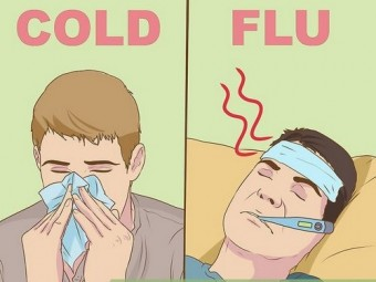 https://static.medportal.ru/pic/mednovosti/news/2019/02/19/068flu/aid5543384-v4-728px-Recognize-the-Difference-Between-a-Cold-and-the-Flu-(Influenza)-Step-6_340x255.jpg