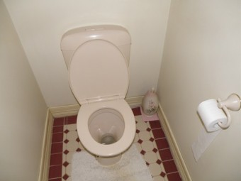 https://static.medportal.ru/pic/mednovosti/news/2019/06/24/341diarea/Australian_Toilet500_340x255.jpg