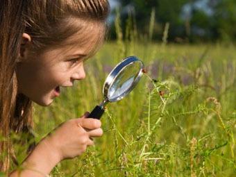 дети исследователи картинки