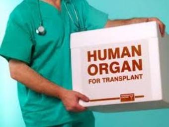 Богомолець: Мій законопроект про трансплантацію, який дає надію тисячам українців, можуть не затвердити - Цензор.НЕТ 4867